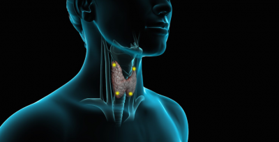 tiroide-segnali-che-non-funziona-bene