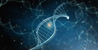 test-genetico-positivo-senoclinic