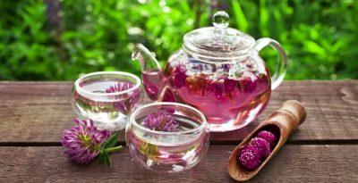 Trifoglio rosso: proprietà e benefici in menopausa