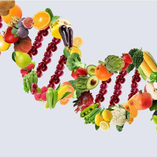 alimentazione-in-oncologia-senoclinic